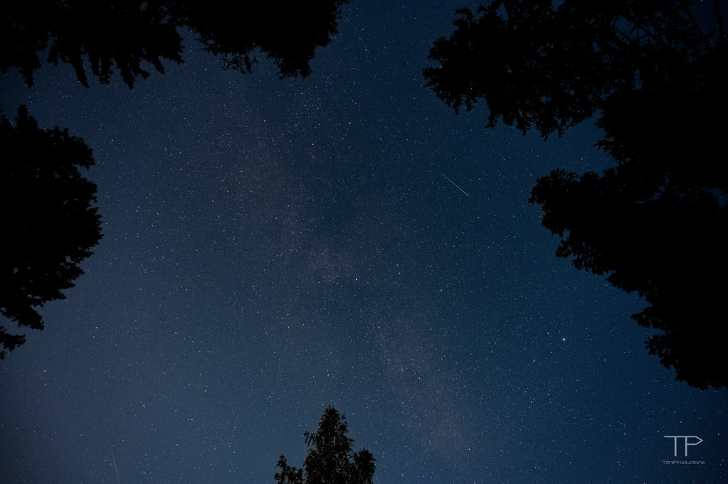 Stars, milkyway and satellites