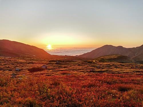 作例 雲海の向こうに沈む夕日と草紅葉 @立山室堂