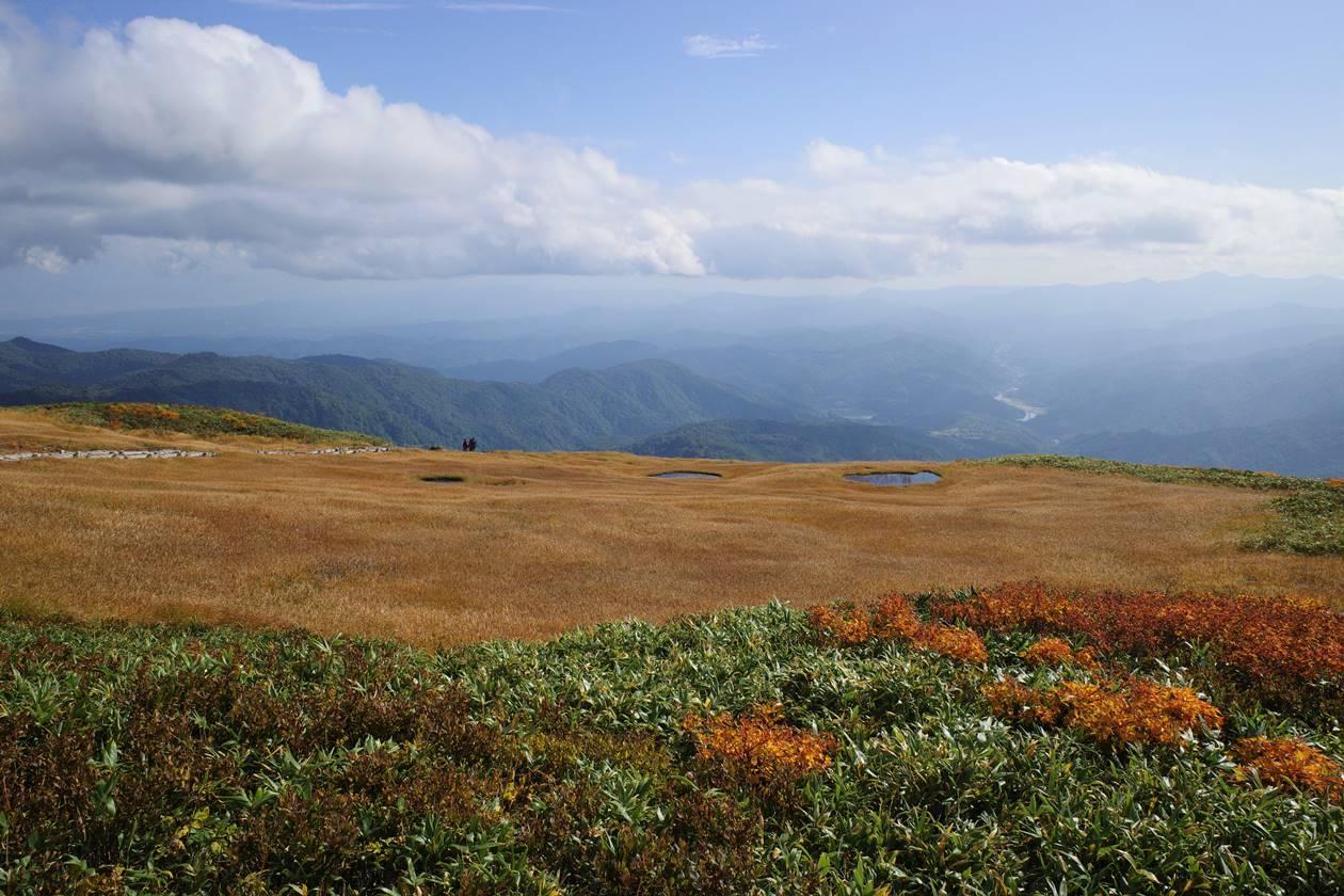 姥ヶ岳 池塘と草紅葉