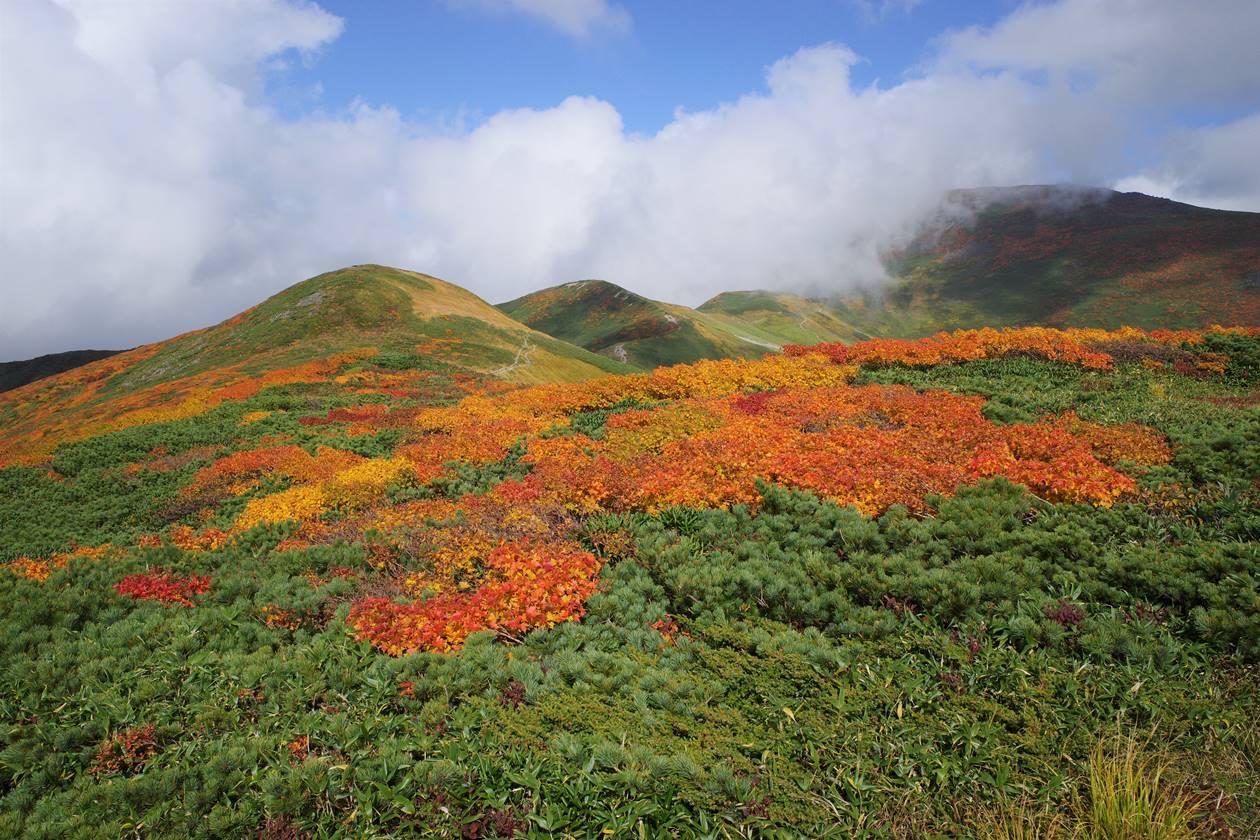 姥ヶ岳の紅葉