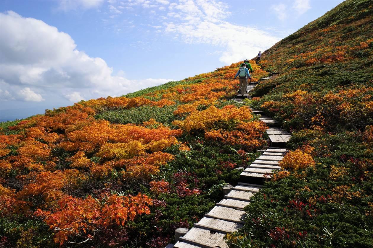 秋の月山~姥ヶ岳 紅葉登山