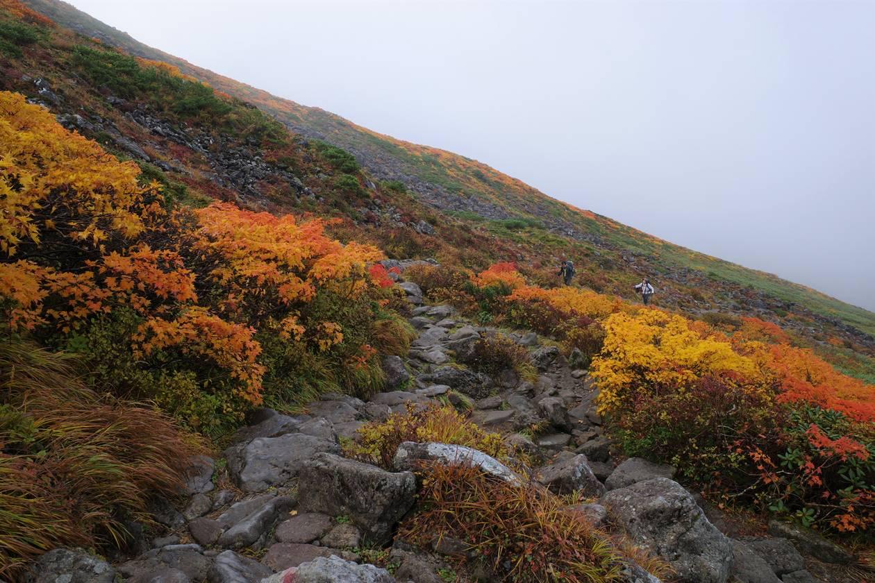 月山登山道の紅葉