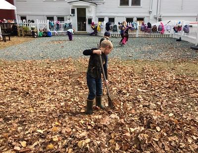 raking the pile