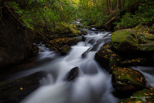 canon 6d 1635 l f4 moccasin creek hemlock falls trail fall autumn orange landscape long exposure harmon caldwell color polar pro filter leaf leaves water steam