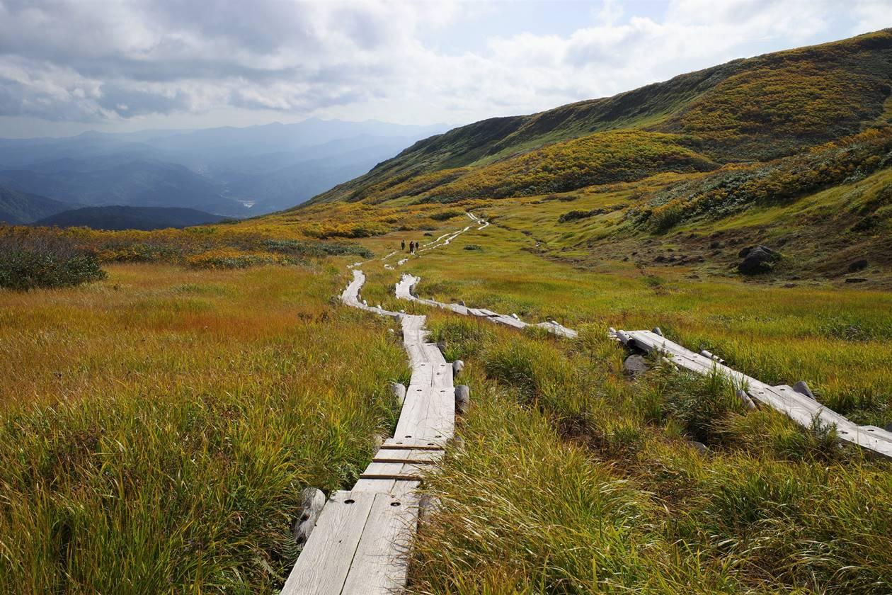 秋の月山 湿原の草紅葉と木道