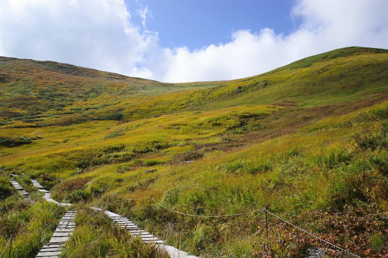 月山 湿原の草紅葉と木道