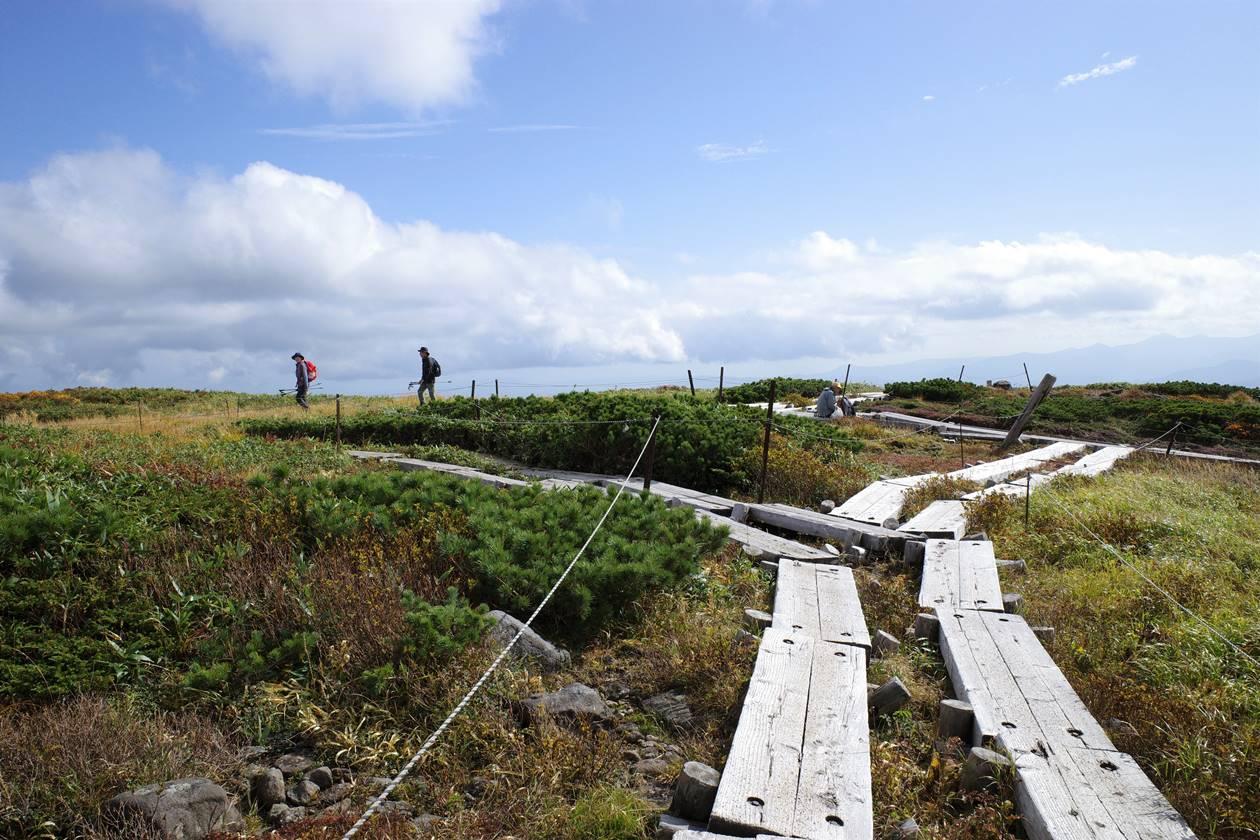 姥ヶ岳山頂の木道路