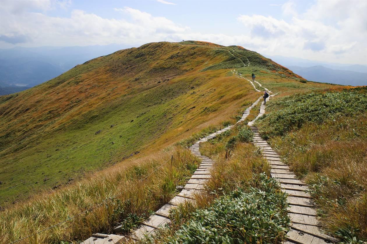 姥ヶ岳へと続く稜線の木道