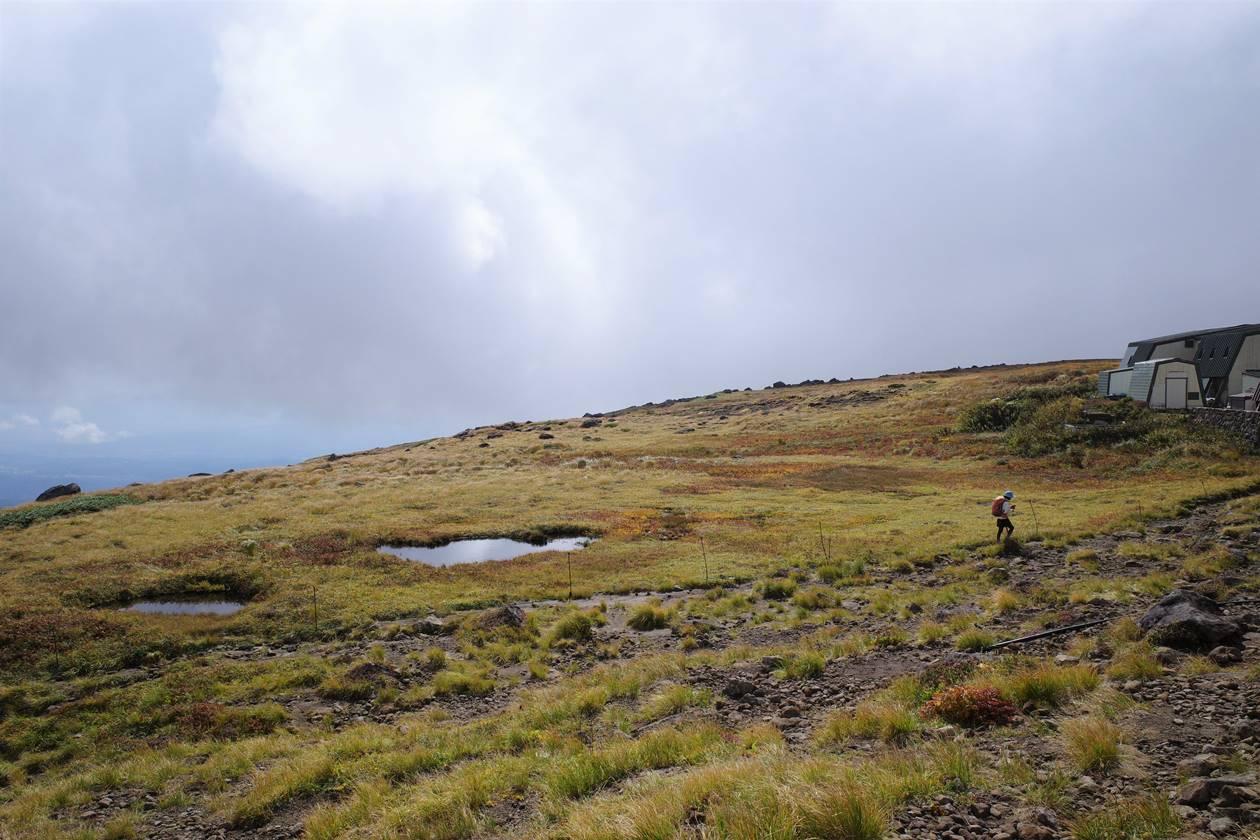 月山山頂の池塘