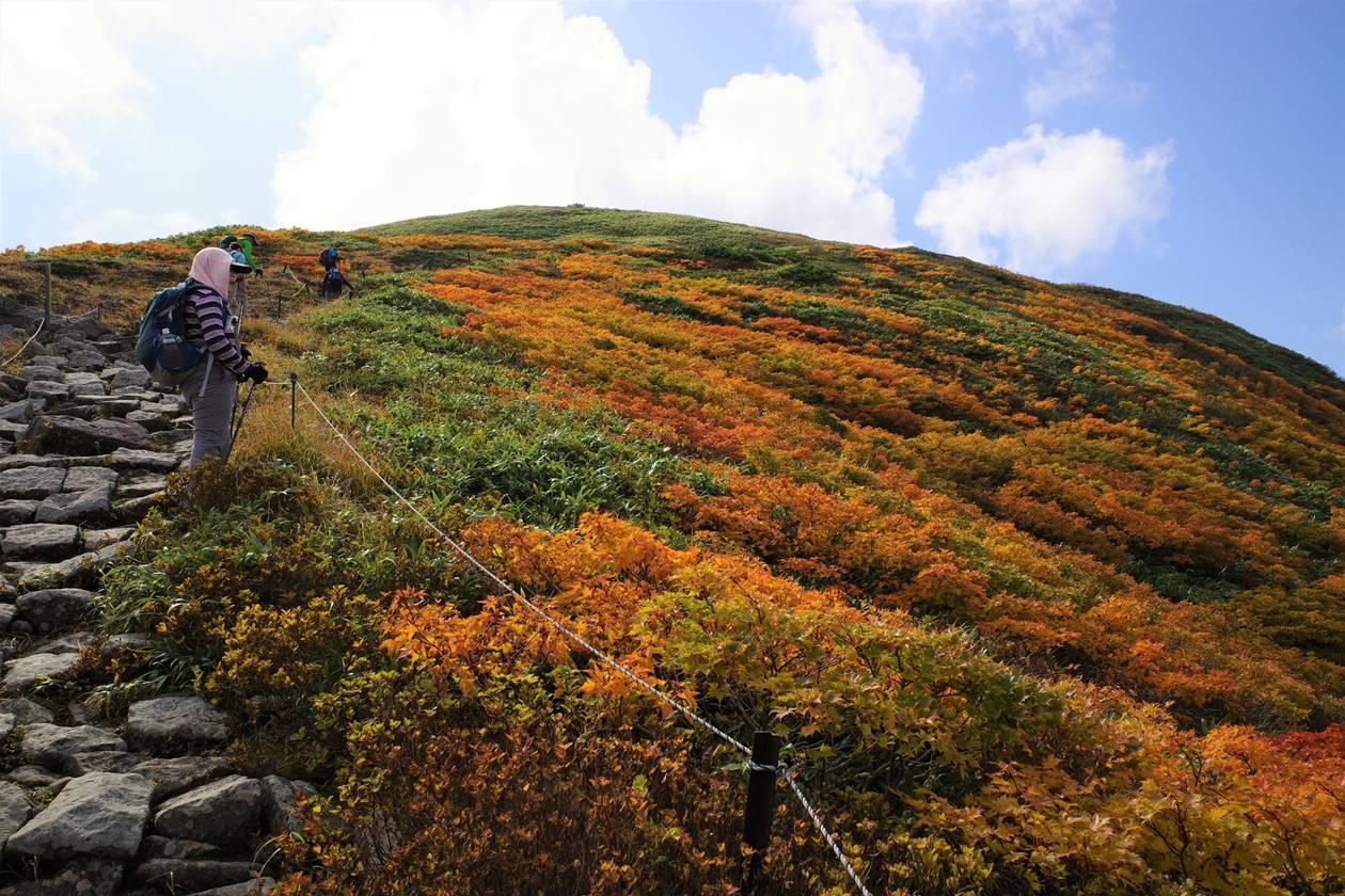 月山~姥ヶ岳登山 稜線の紅葉