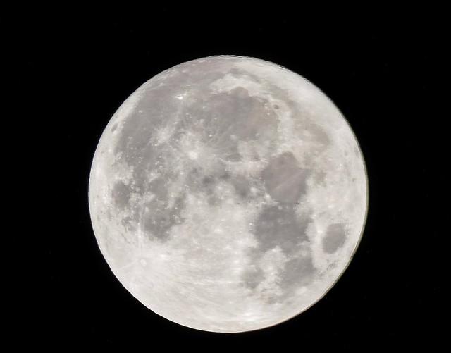 Moon_Mid-Autumn 2020