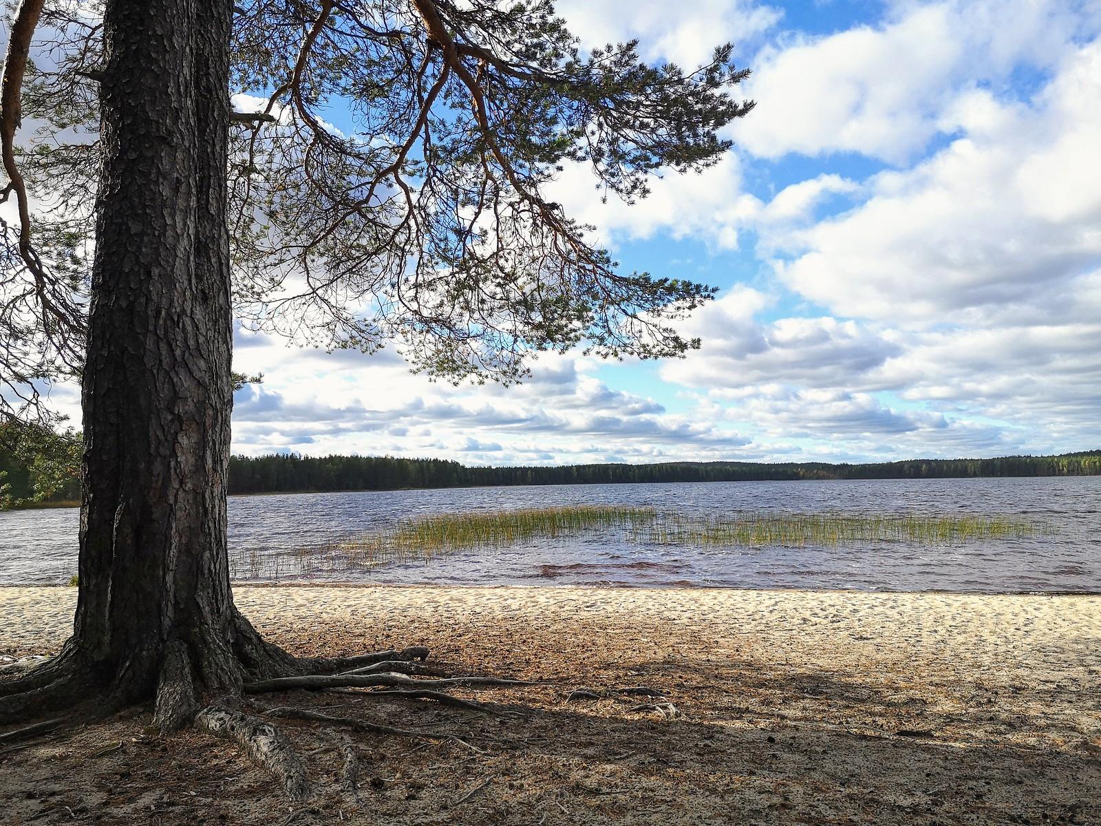 Patvinsuon kansallispuisto järvet