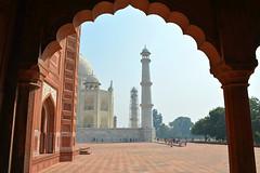 India 146
