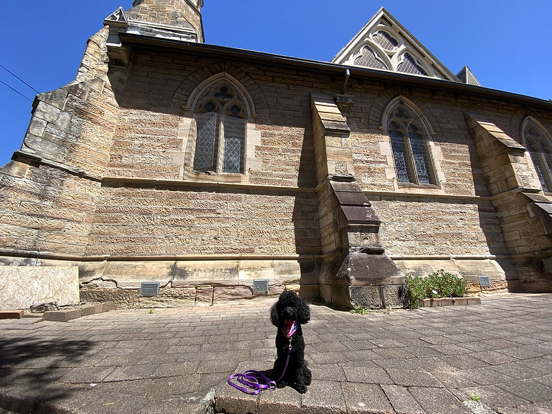 Scully at St Andrew's Congregational Church, Balmain