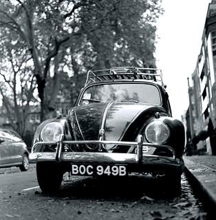 Beetle. Pimlico.