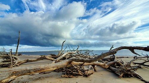 interestingclouds clouds clouddrama landscape landscapephotography beach driftwoodbeach cloudjunkie ilovedriftwood bigtalbotislandstatepark bigtalbotisland floridastateparks thisisflorida floridabeaches perfectday cloudysky samsungalaxynote driftwood beacheslandscapes verycloudy jacksonvilleflorida