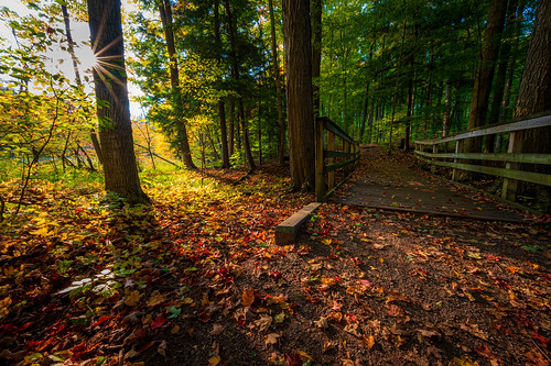 huronnaturalarea fall colors autumn kitchener waterloo ontario canada park trees water bridge sun red yellow orange green