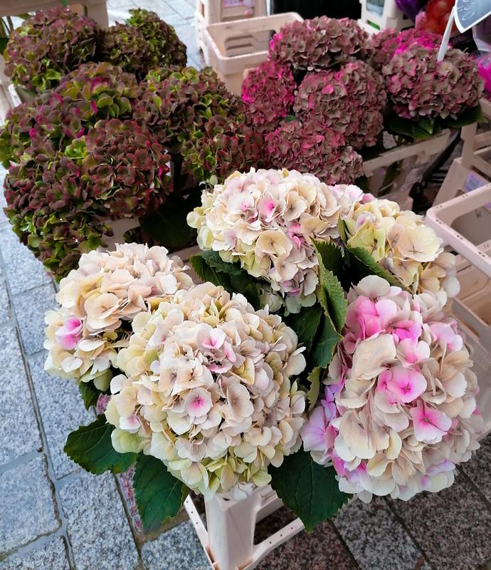 Flores en el mercado de Brujas