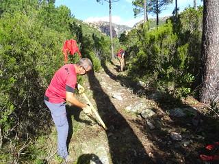 Travaux de débroussaillage et de nettoyage en RD de la Figa Bona sur le chemin du Carciara aval (HR21)
