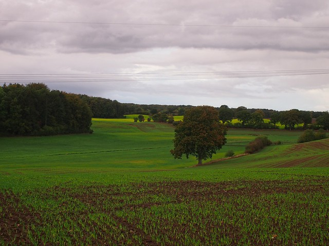 October landscape with autumn weather   October 10, 2020   In the district of Plön - Schleswig-Holstein - Germany