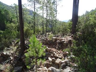 Ruisseau en RD de la Figa Bona sur le chemin du Carciara aval (HR21)