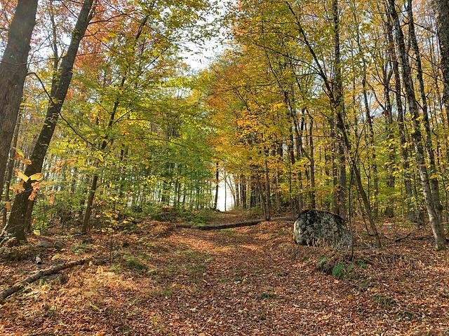 0:56:21 (63%): hiking lebanon newhampshire storrshill goodwinpark unitedstates