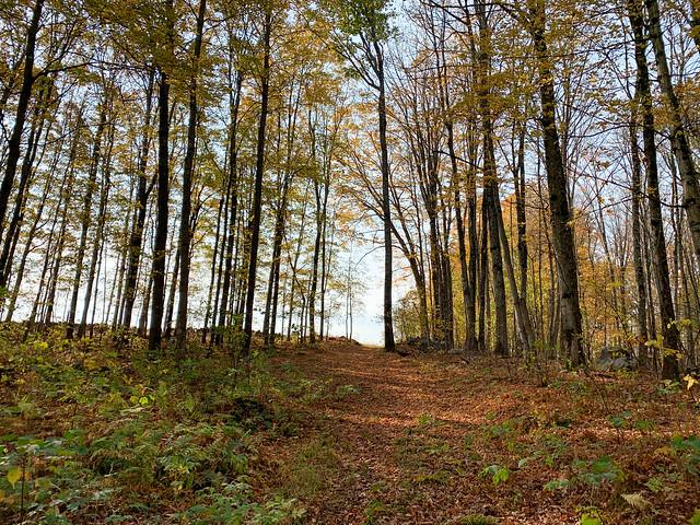 0:57:35 (65%): hiking lebanon newhampshire storrshill goodwinpark unitedstates