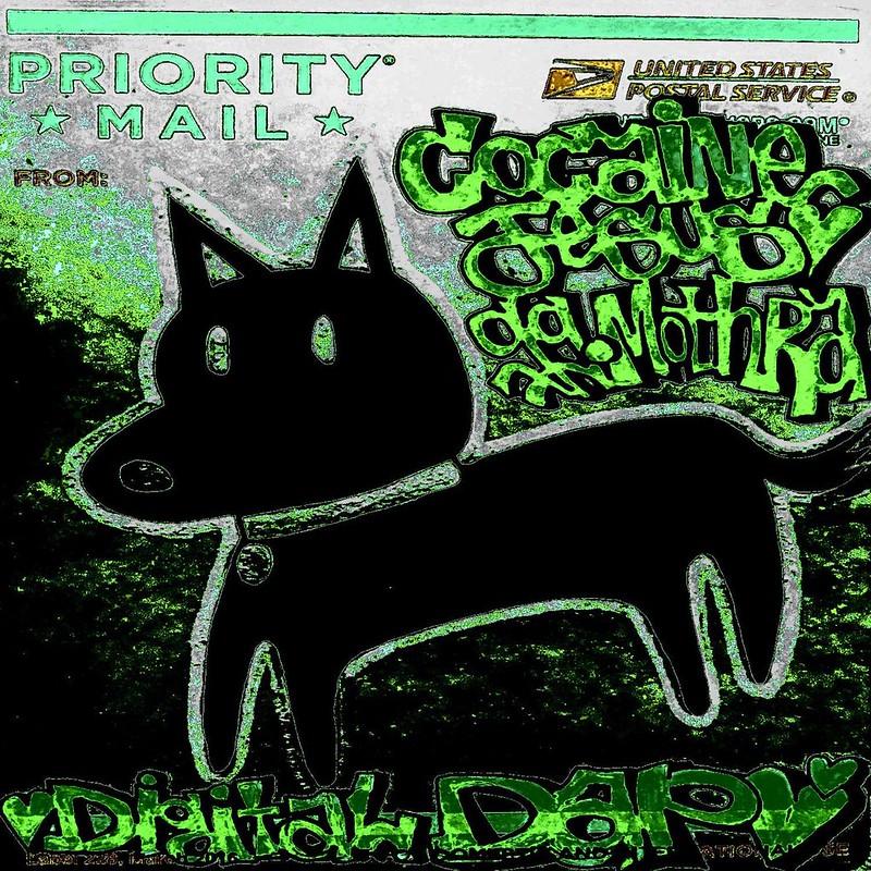 digital dap cover art