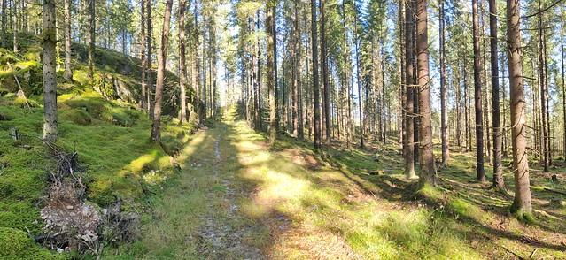 Hedekas Klåbungeröd, Bohuslän, Sweden
