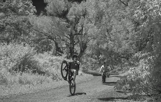 Happy bikers (B&W rev.)