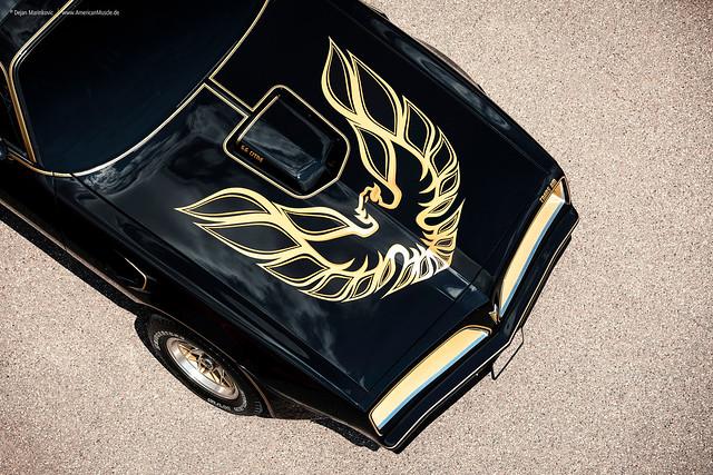 Screaming Chicken - 1977 Pontiac Trans Am - Bandit