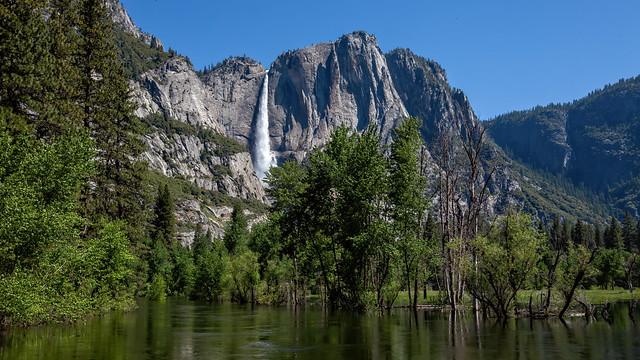Yosemite Fall and Merced River