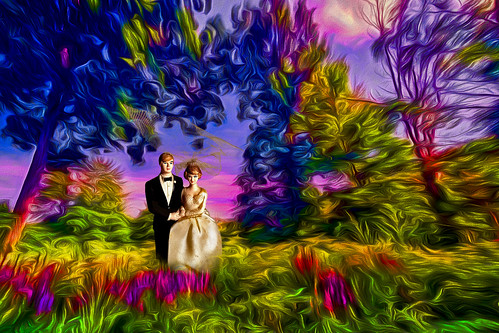 bride groom wedding colorful tree vow day digital flickr country bright happy colour scenic america world sunset sky red nature blue white green art light sun cloud park landscape summer old new photoshop google bing yahoo stumbleupon getty national geographic creative composite manipulation hue pinterest blog twitter comons wiki pixel artistic topaz filter on1 sunshine image reddit tinder russ seidel facebook timber unique unusual fascinating color