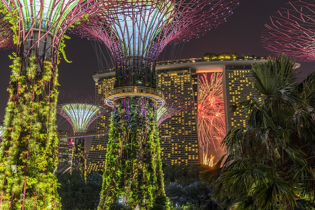 NDP 2017 Fireworks Seen from Supertree Grove
