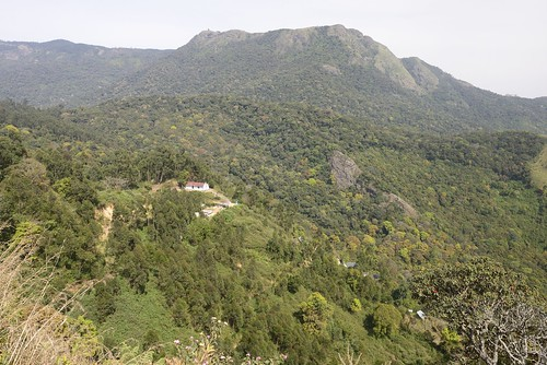 india munnar topstation tamilnadu