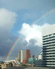 🌈 Happy #ComingOutDay, Den Haag!
