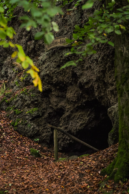 Caves in the forest