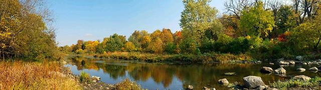 Local Autumn Color