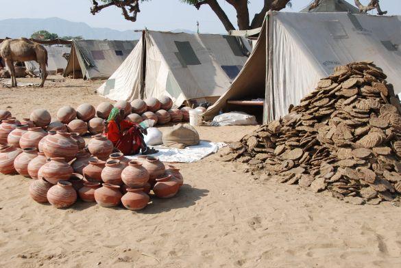 DSC_2004IndiaPushkarCamelFair