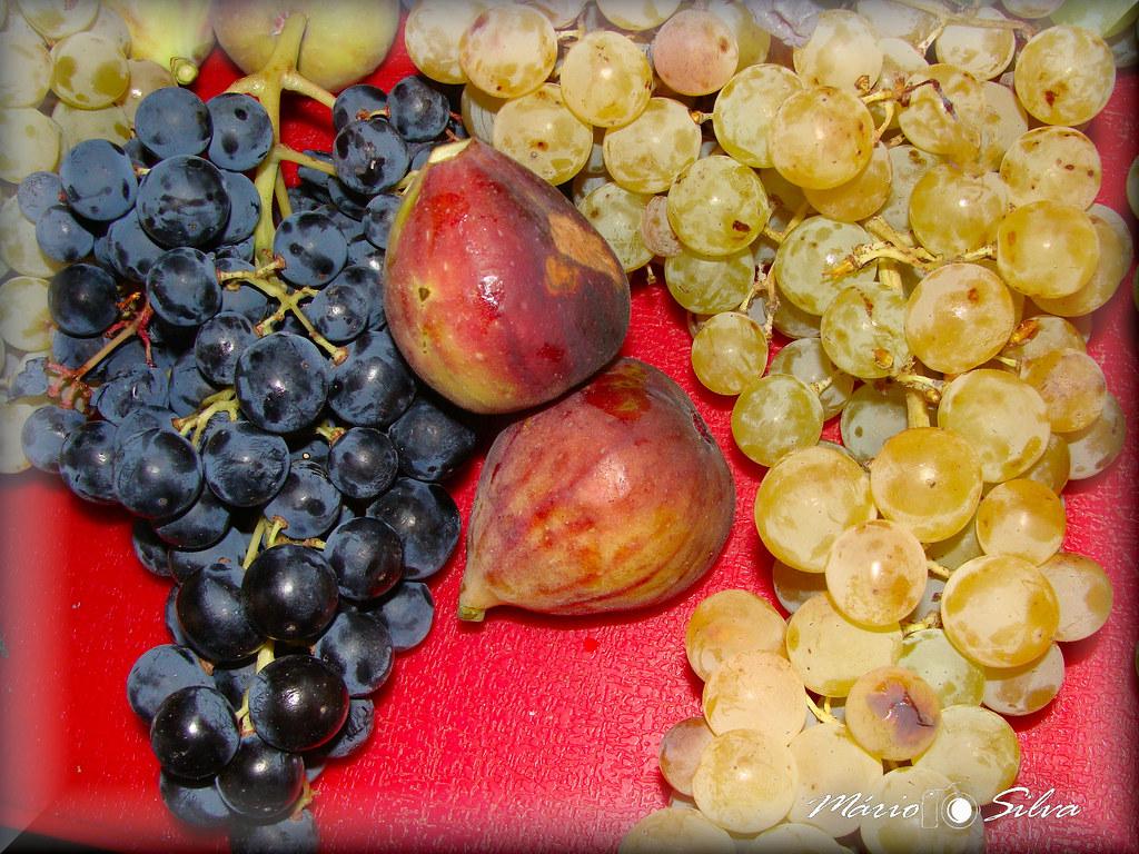 uvas e figos_ms