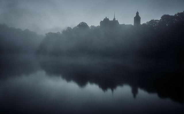 foggy blue hour