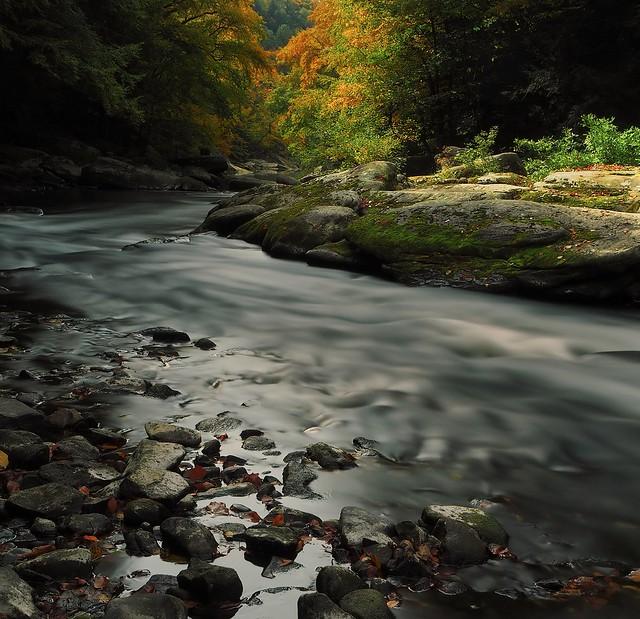 Slippery Rock Creek #2