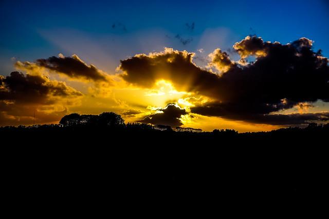Golden sun rays