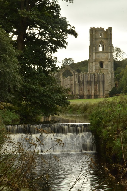 River Skell and Fountains Abbey