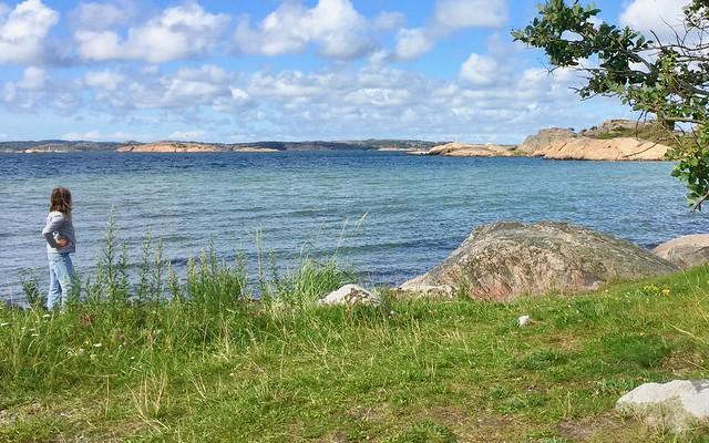 Stigfjorden Nature Reserve VI