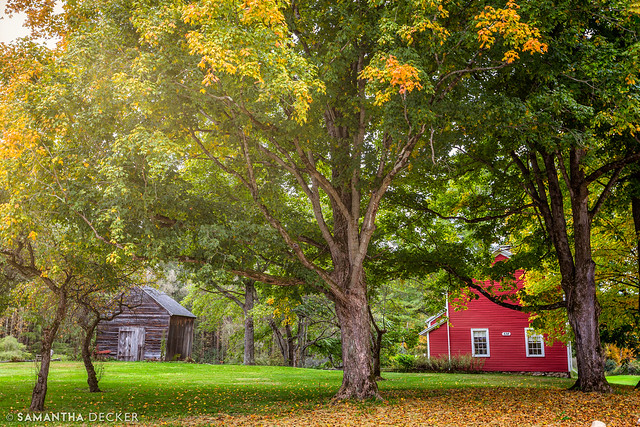 Fall in Bennington