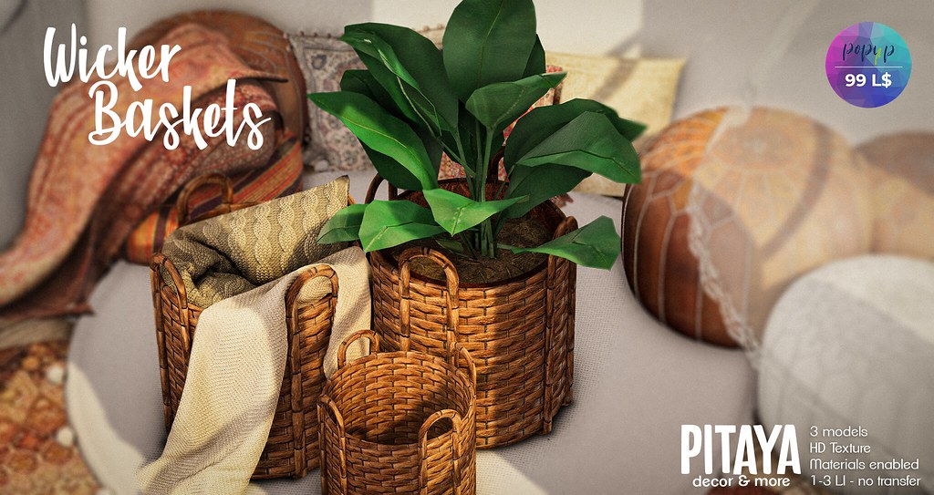 Pitaya – Wicker Baskets – Pop-up Event