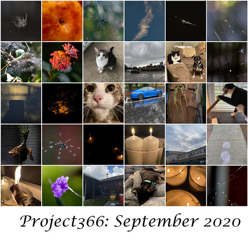 Project 366 September