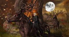 Samhain Twilight