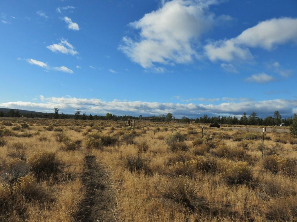 Maston Tie Trail comging back to the Maston Trailhead